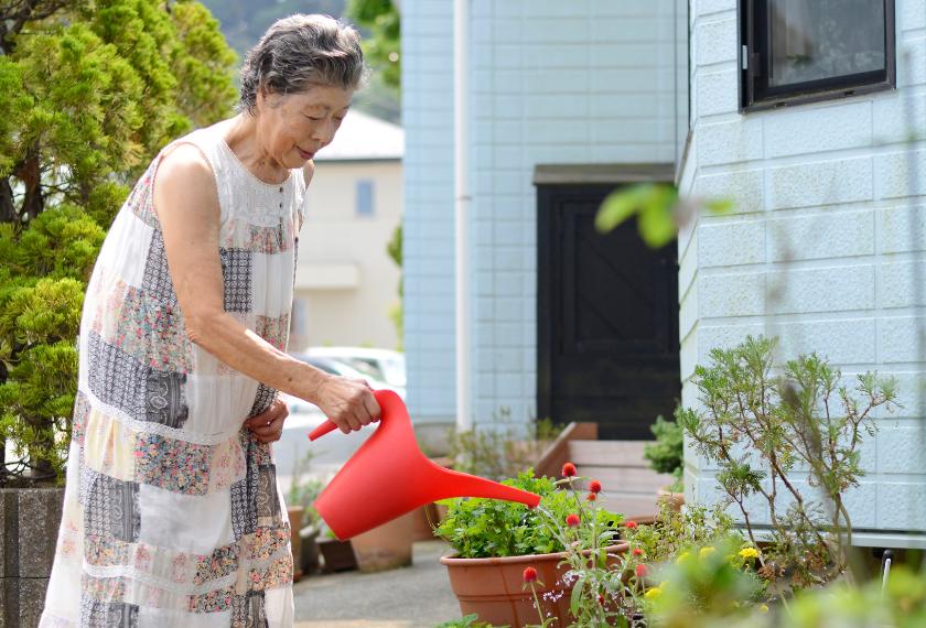 シードペーパーの花を育てている女性