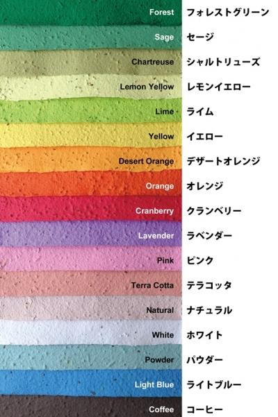 標準カラーチャート17色