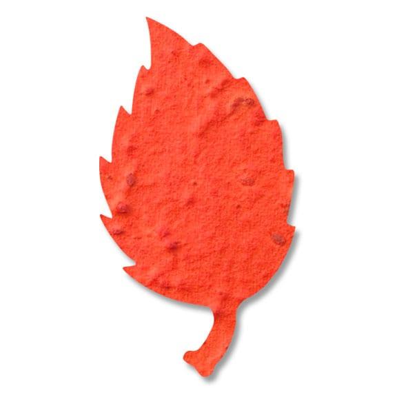葉っぱ5 29×54mm