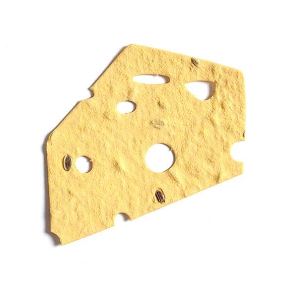 チーズ 61×58mm